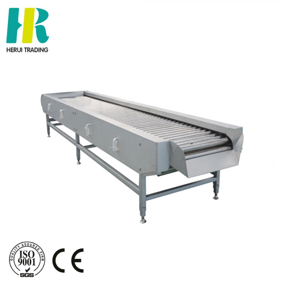 Fruit and vegetable sorting conveyor