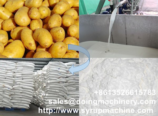 China potato starch machinery supplier potato starch processing