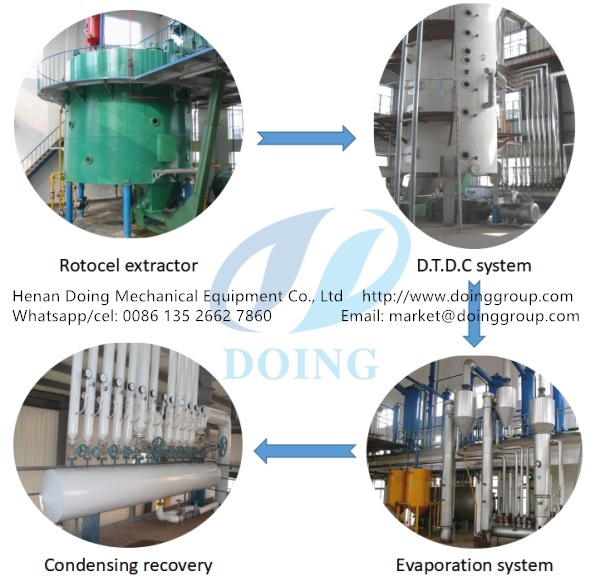 groundnut oil production process