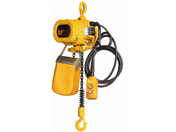 Hoist With Hook Suspension