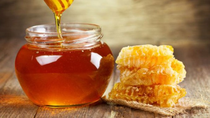 Organic Honey Free of Antibiotics, Pesticides and Environmental Pollutants