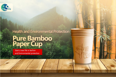paper cups / bamboo